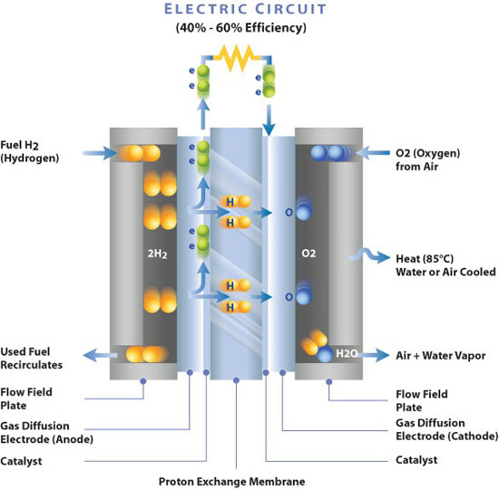Gas Exchange Flow Chart: Membrane Electrode Assembly - Electro-Chemical Reaction ,Chart