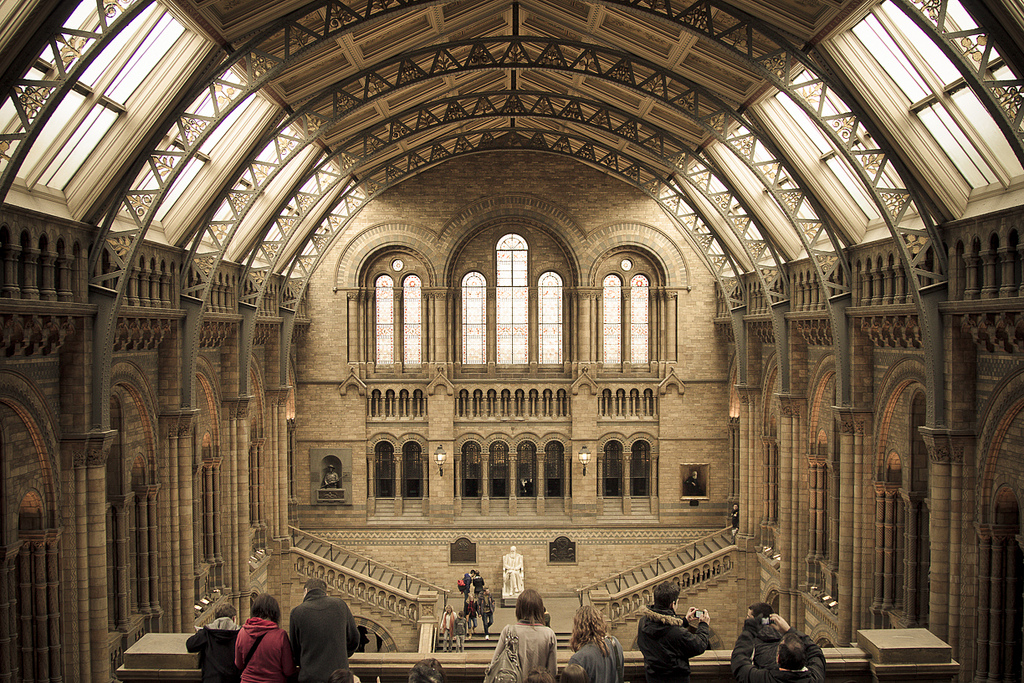 Foyer Museum Uk : File natural history museum london main hall g