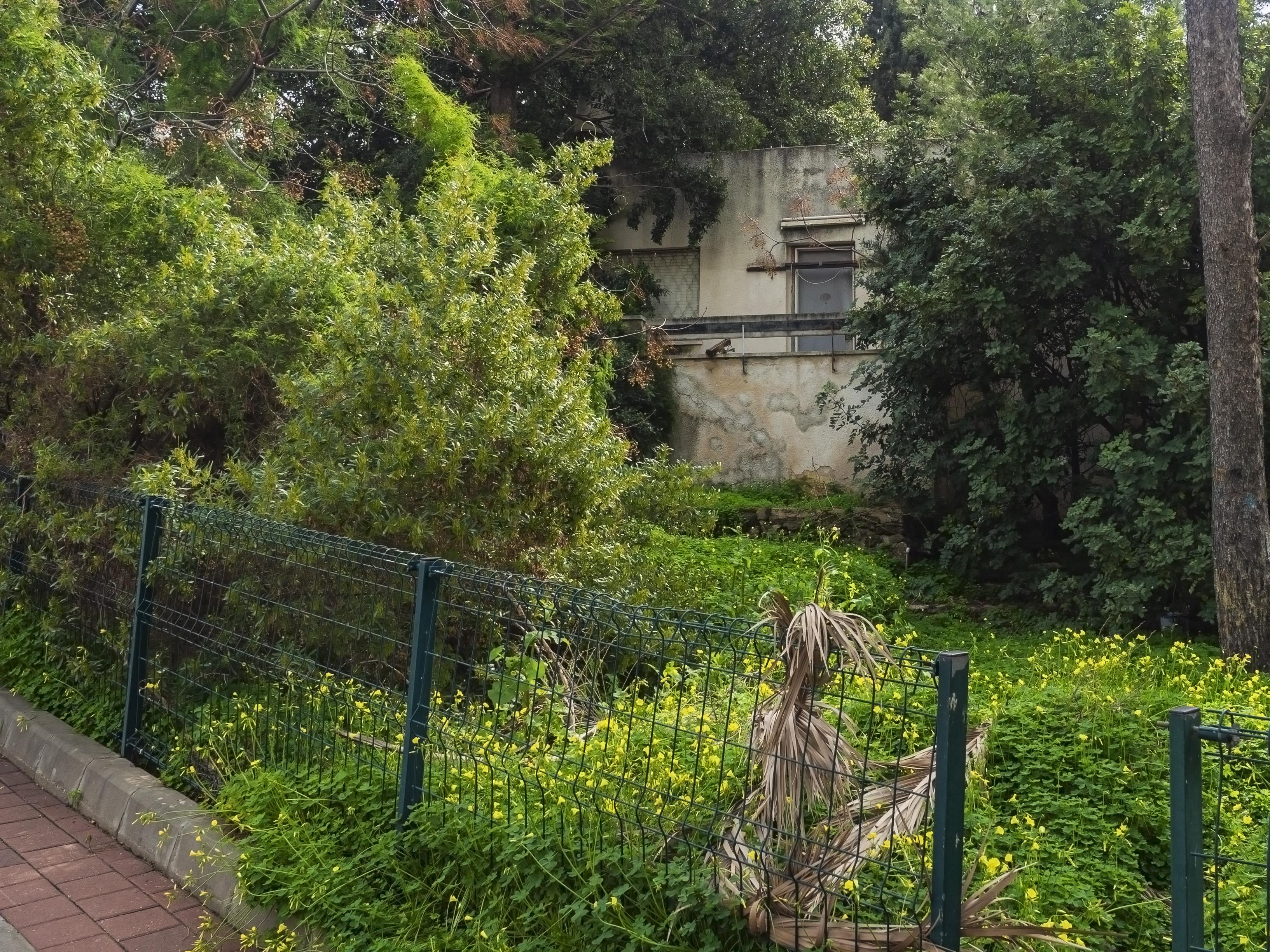 בית פירר(בית קלרה לוסטיג