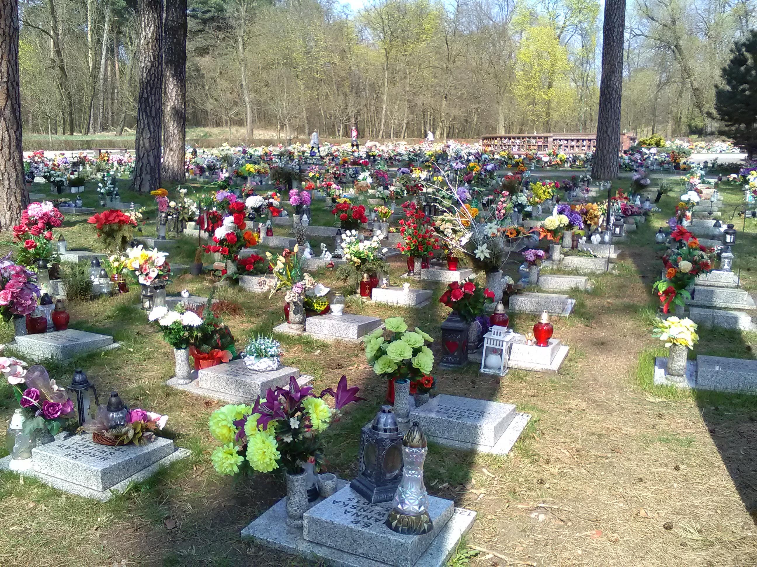 FilePole Urnowe Na Cmentarzu Miostowo W Poznaniu
