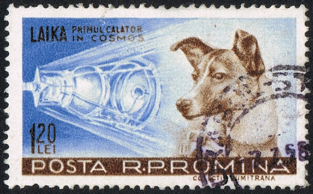 "Posta Romana - 1959 - Laika 120 B.jpg - ""Posta Romana - 1959 - Laika 120 B"" by scanned by user Neozoon. Licensed under Public Domain via Wikimedia Commons."