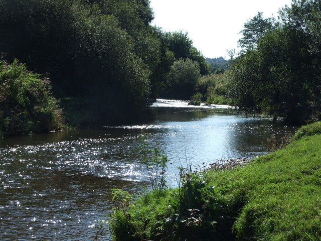 River Otter - geograph.org.uk - 1064671