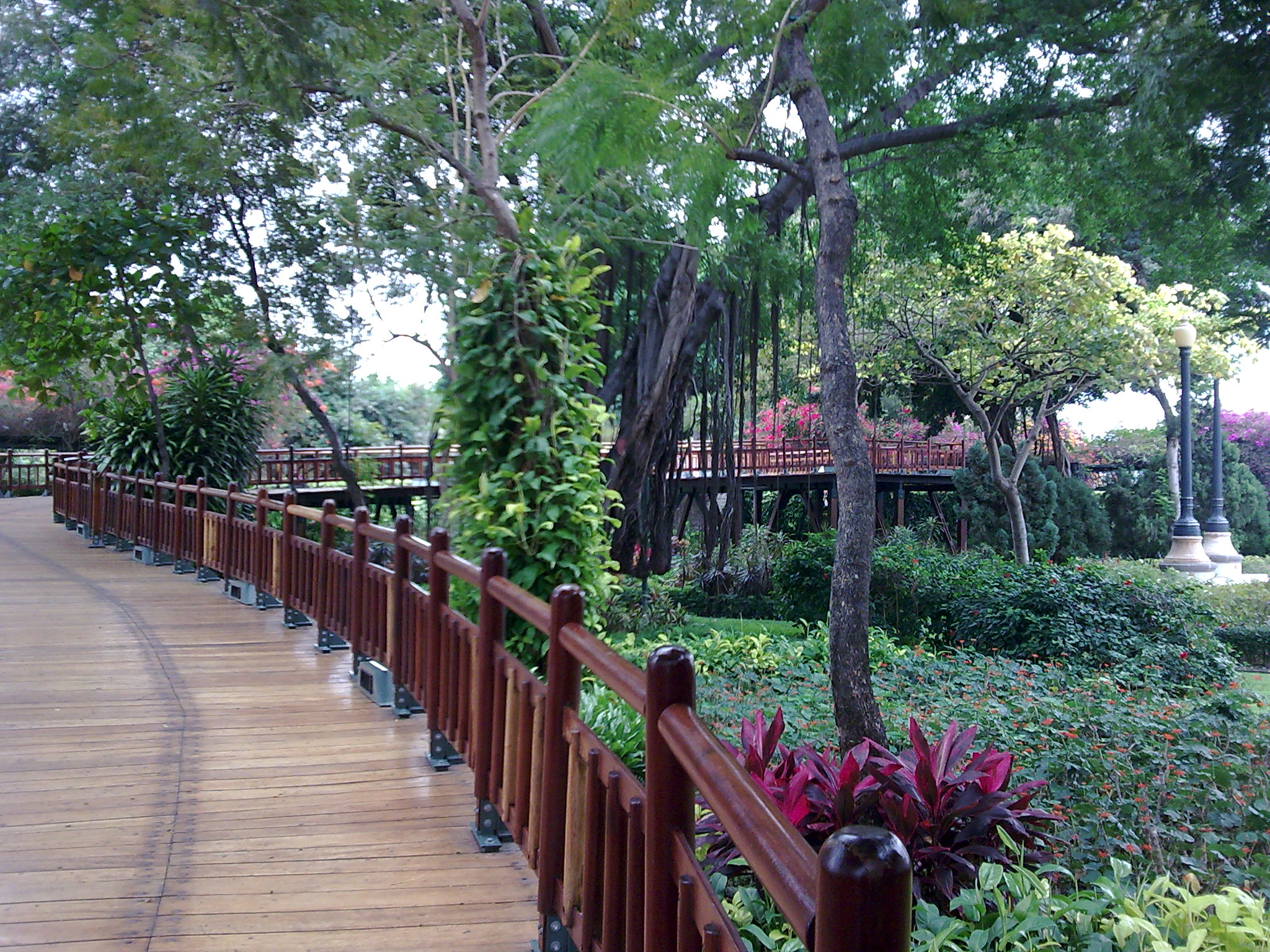 Guayaquil turistico malec n 2000 for Jardin 2000