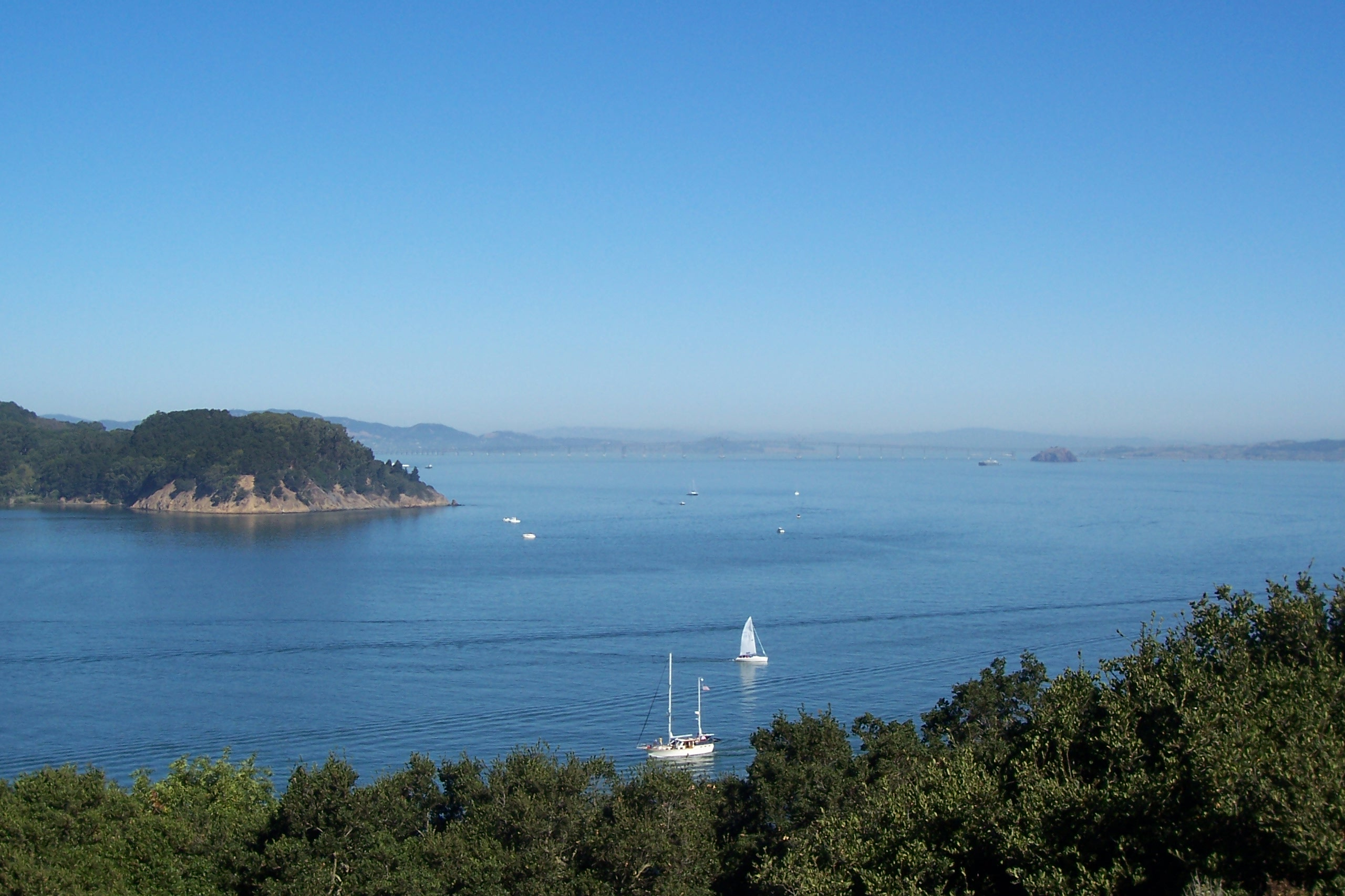 Opinions on San Pablo Bay