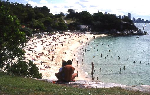 file shark bay nielsen park sydney     wikimedia commons