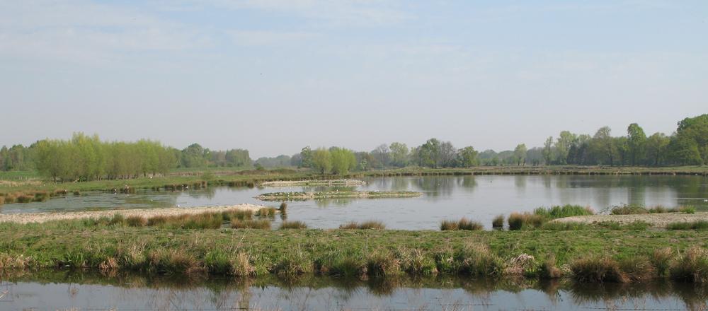 Steinhorster Becken bei Delbrück