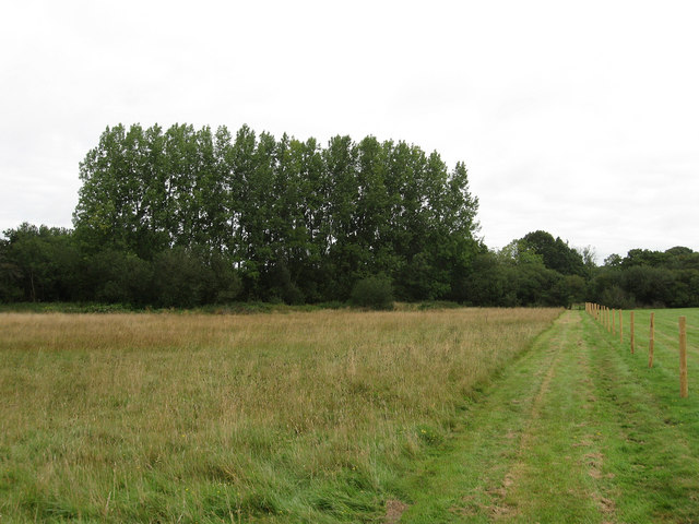 Sussex Border Path - geograph.org.uk - 1445928