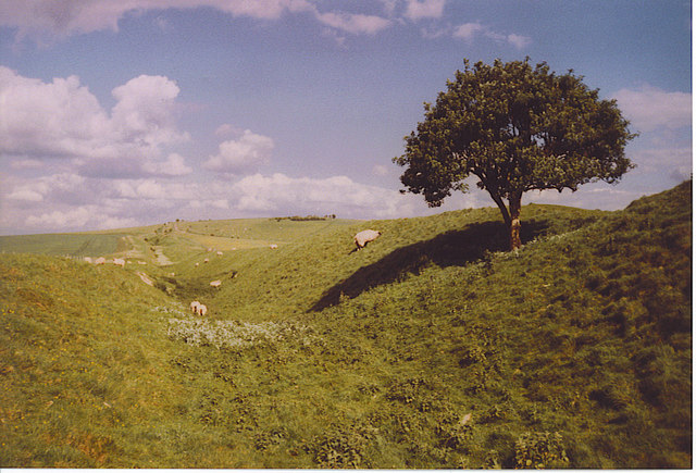 The Wansdyke, Looking East to Milk Hill. - geograph.org.uk - 187168