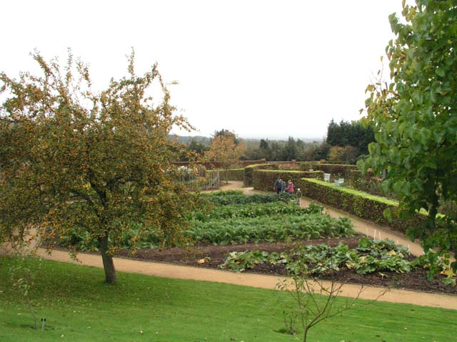 The kitchen garden at Chartwell - geograph.org.uk - 406325