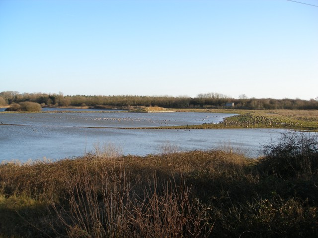 Tophill Low Nature Reserve South Lagoon - geograph.org.uk - 312566