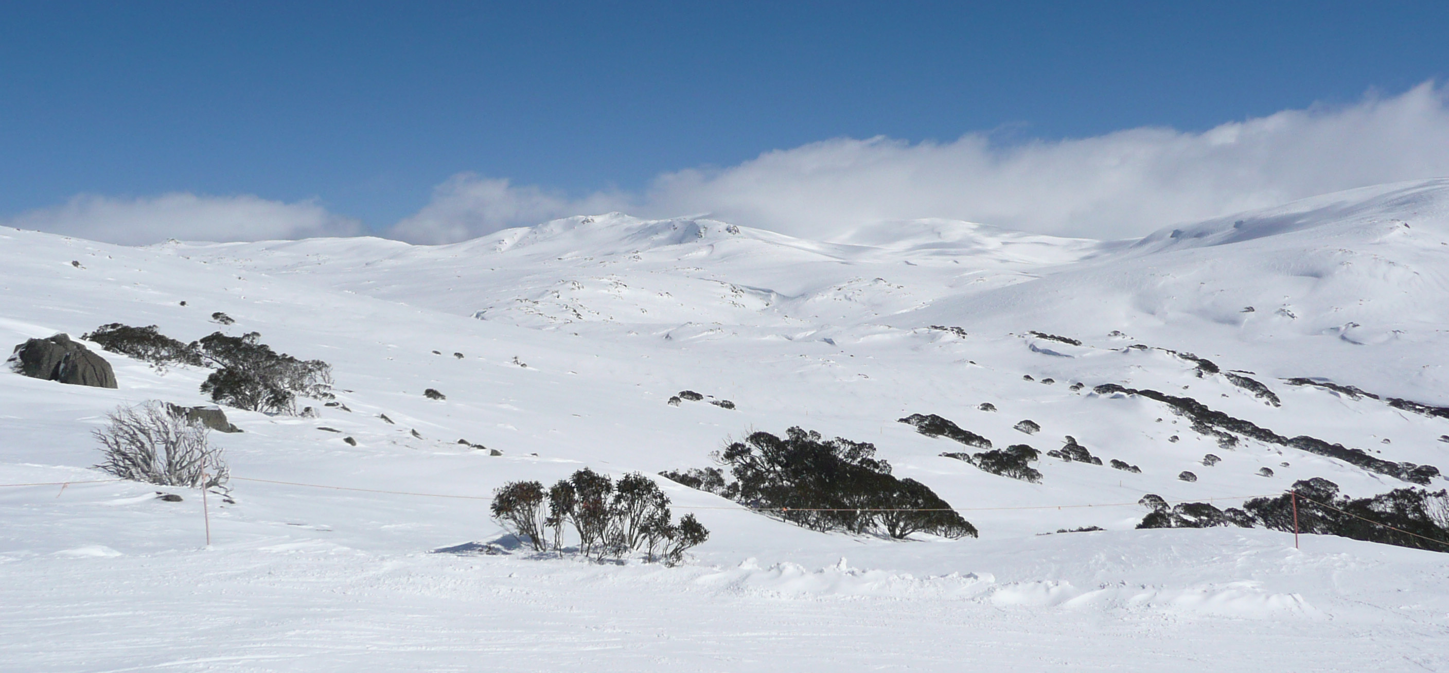 Skiing In New South Wales Wikipedia