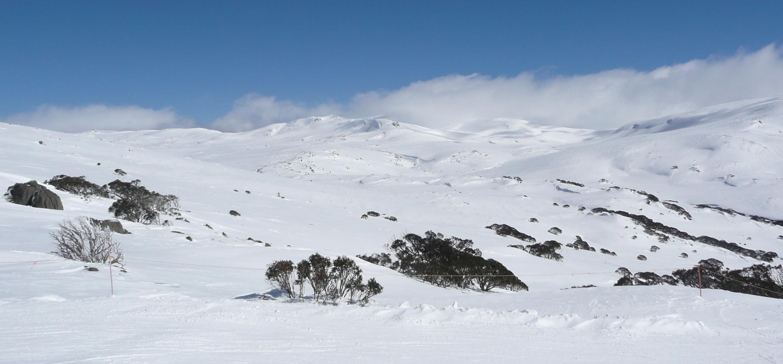 Background Images Landscape Winter