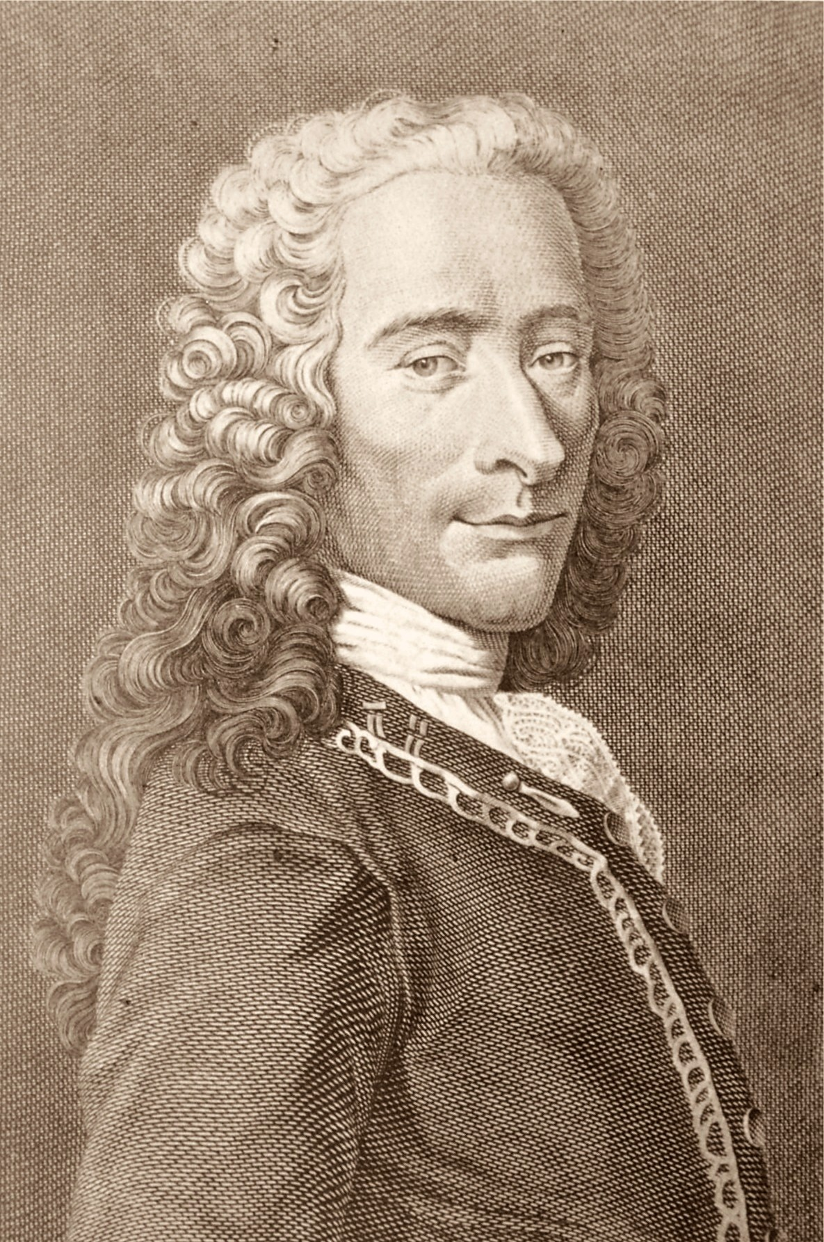 a look into life and career of voltaire Voltaire's career had to this point leaned more toward literature than philosophy, but in england's more laissez-faire market of ideas, voltaire started to engage with convention-challenging concepts about the universe and man's place in it.