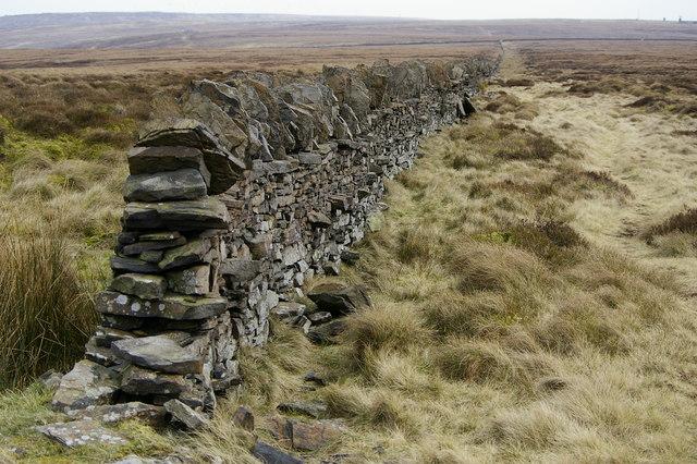 Wall along Deep Nitch - geograph.org.uk - 364897