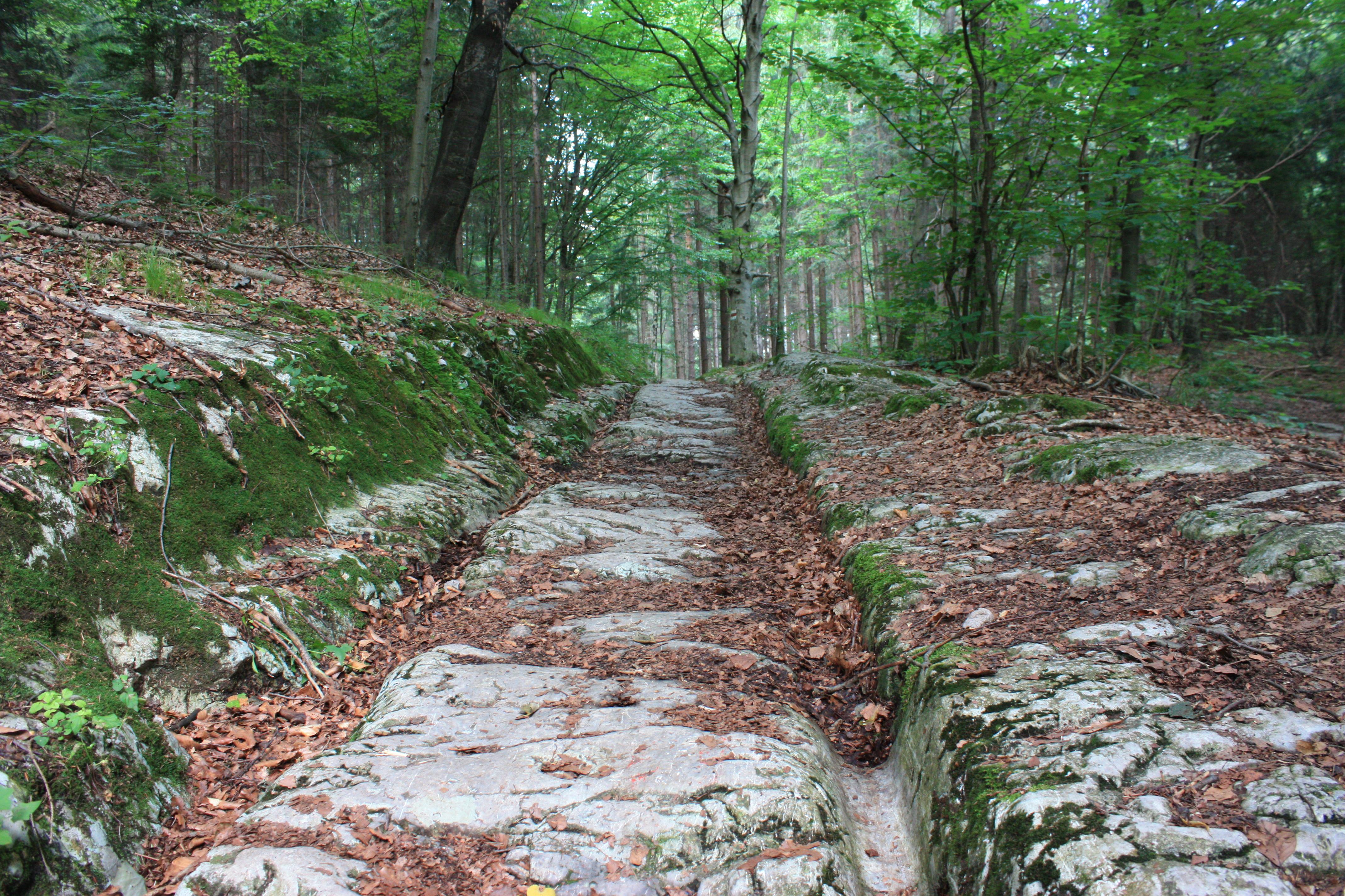 Flirt & Abenteuer Warmbad-Judendorf (Villach) | Locanto Casual