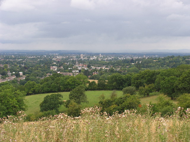 West from Ham Hill South - geograph.org.uk - 43879