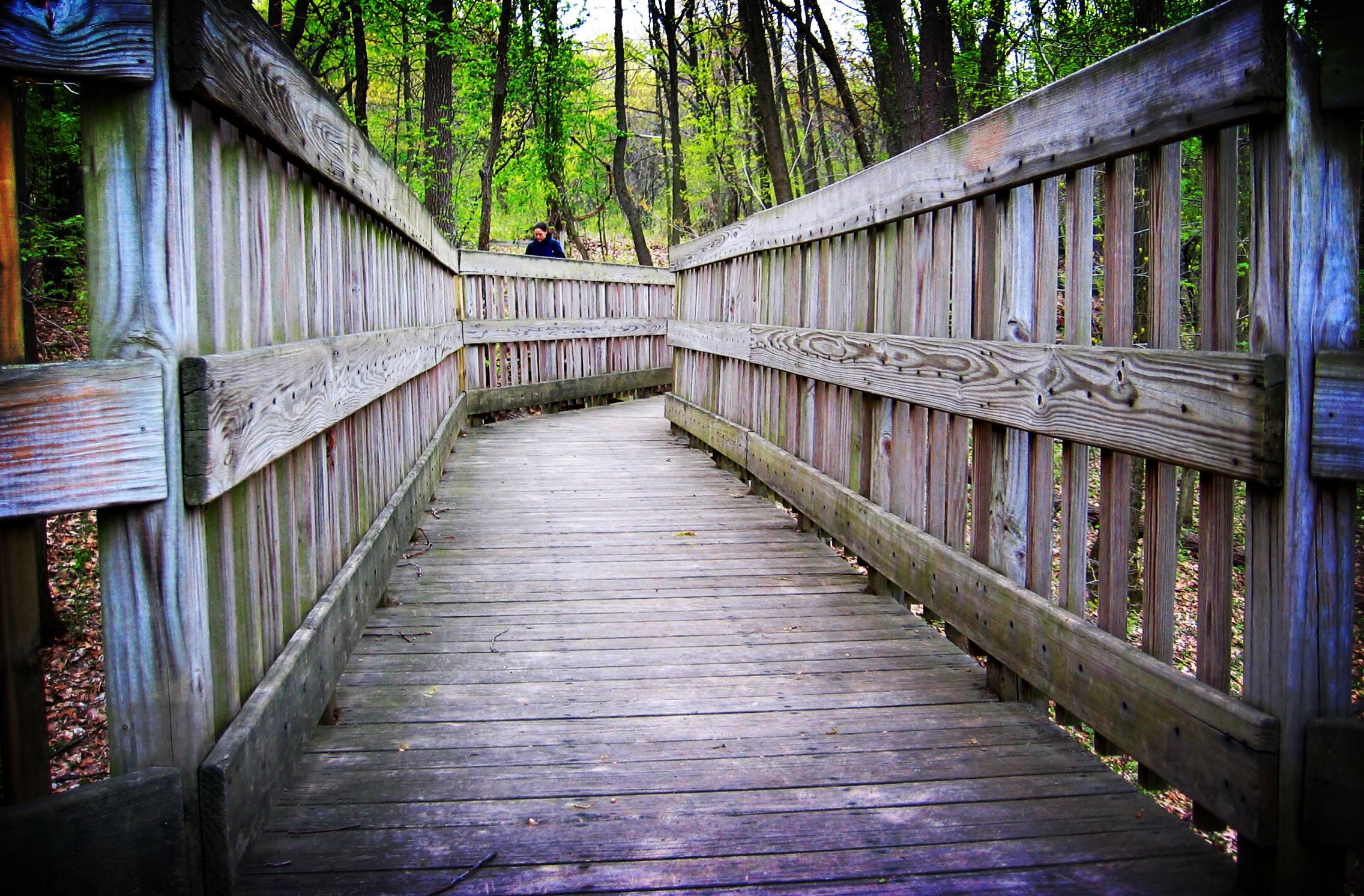 File:Wooden walkway.jpg - Wikimedia Commons