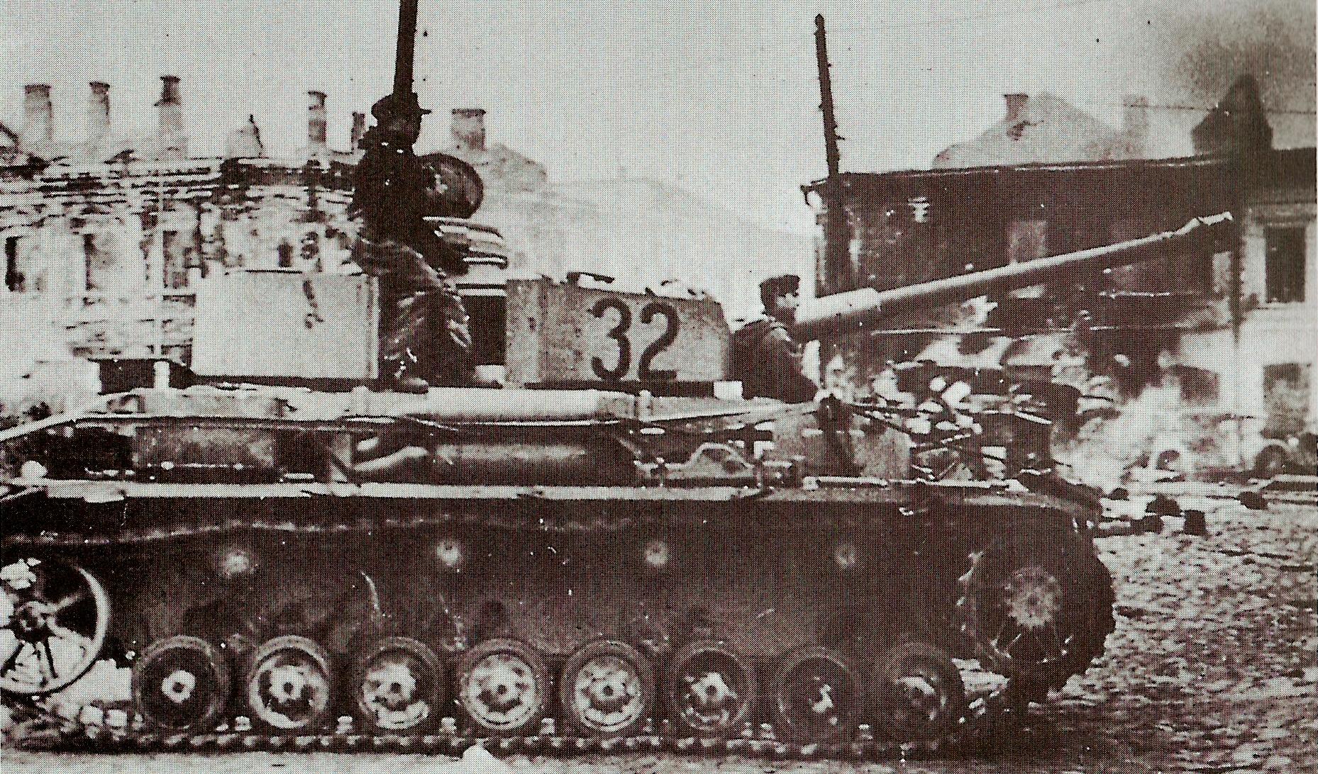 German tanks in Zhitomir