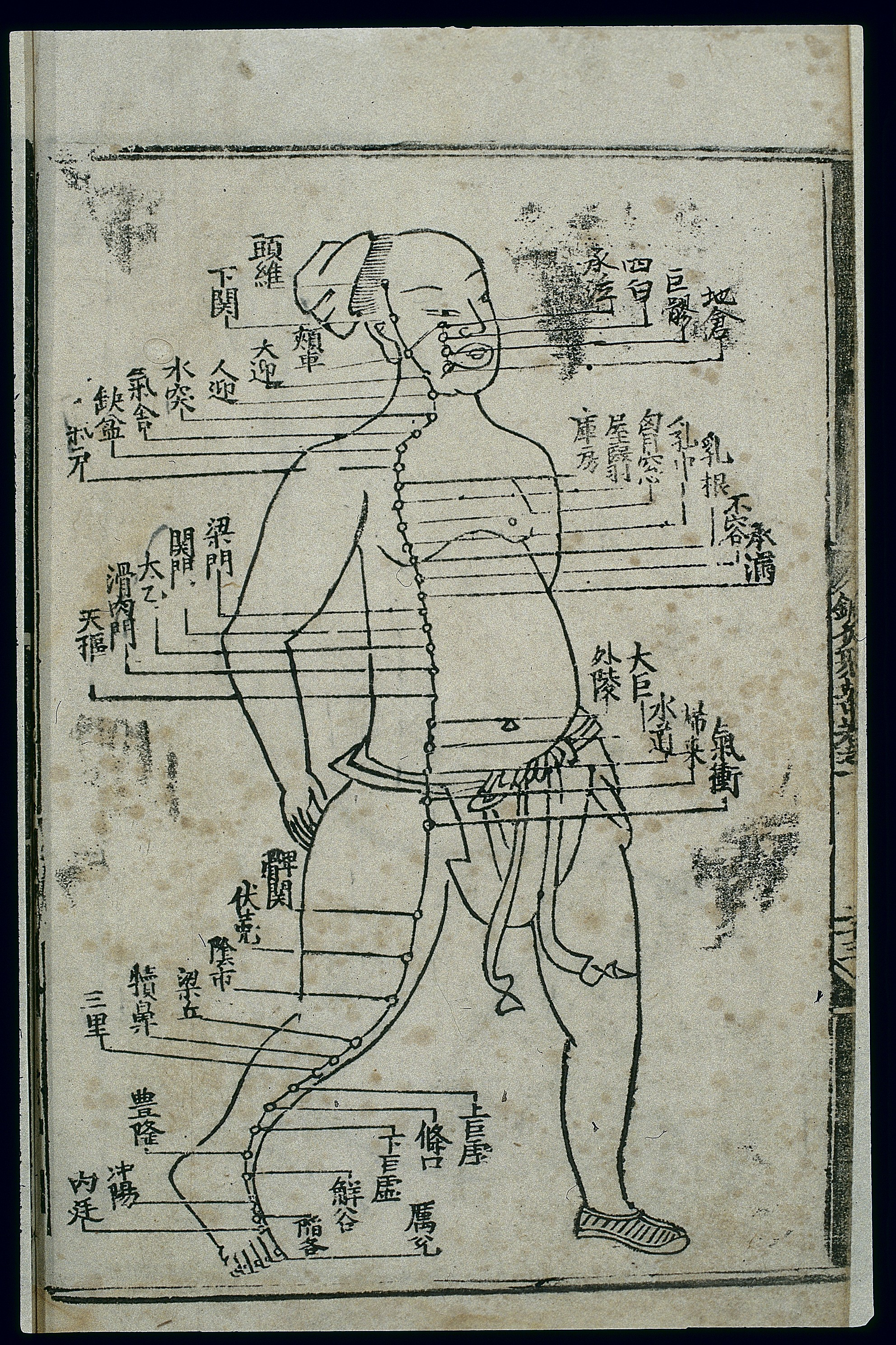 File:Acupuncture chart, stomach channel of foot yangming ...