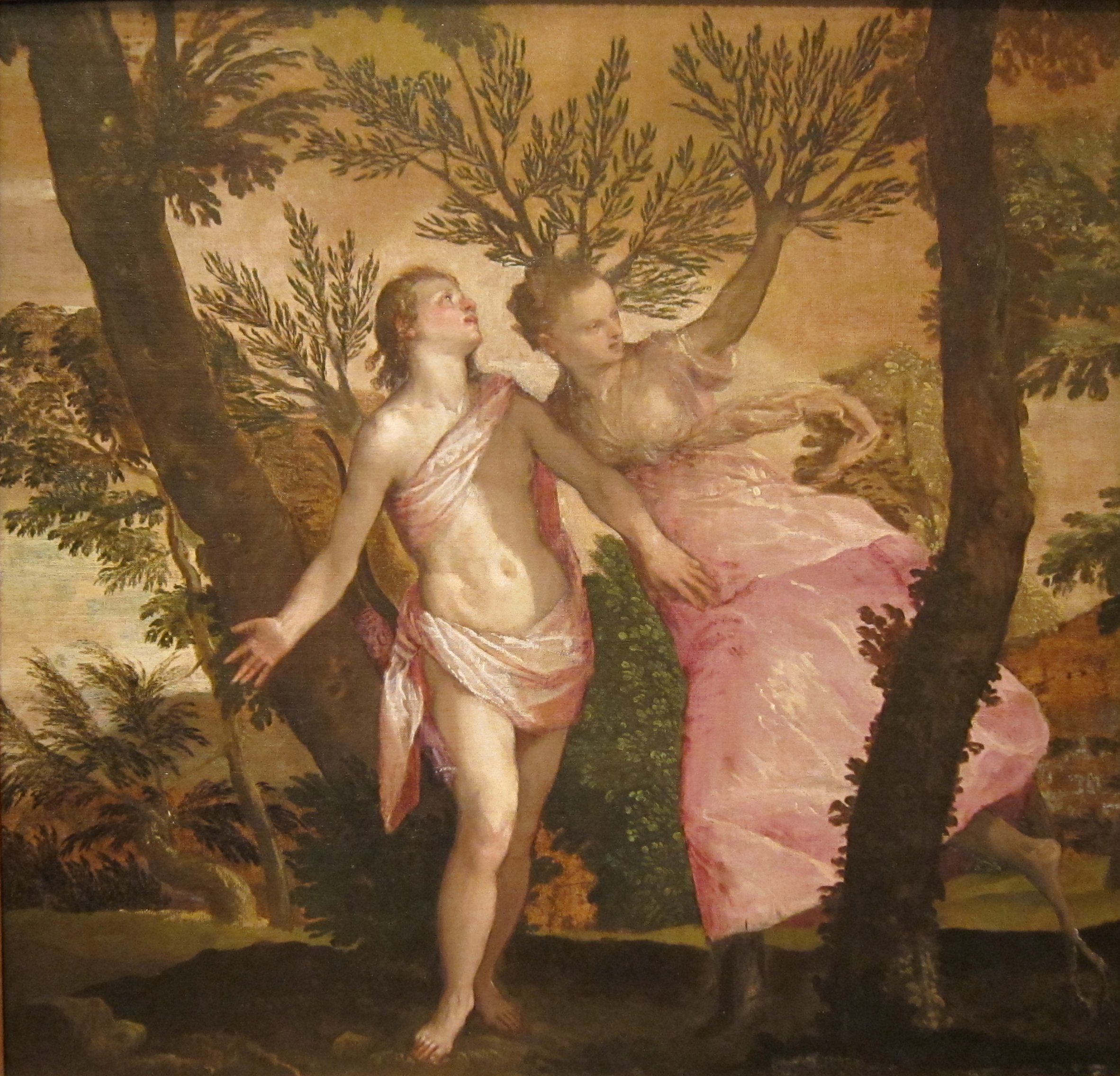 File Apollo And Daphne By Veronese San Diego Museum Of Art Jpg Wikimedia Commons
