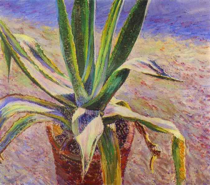 File:Borisovmusatov agave.JPG