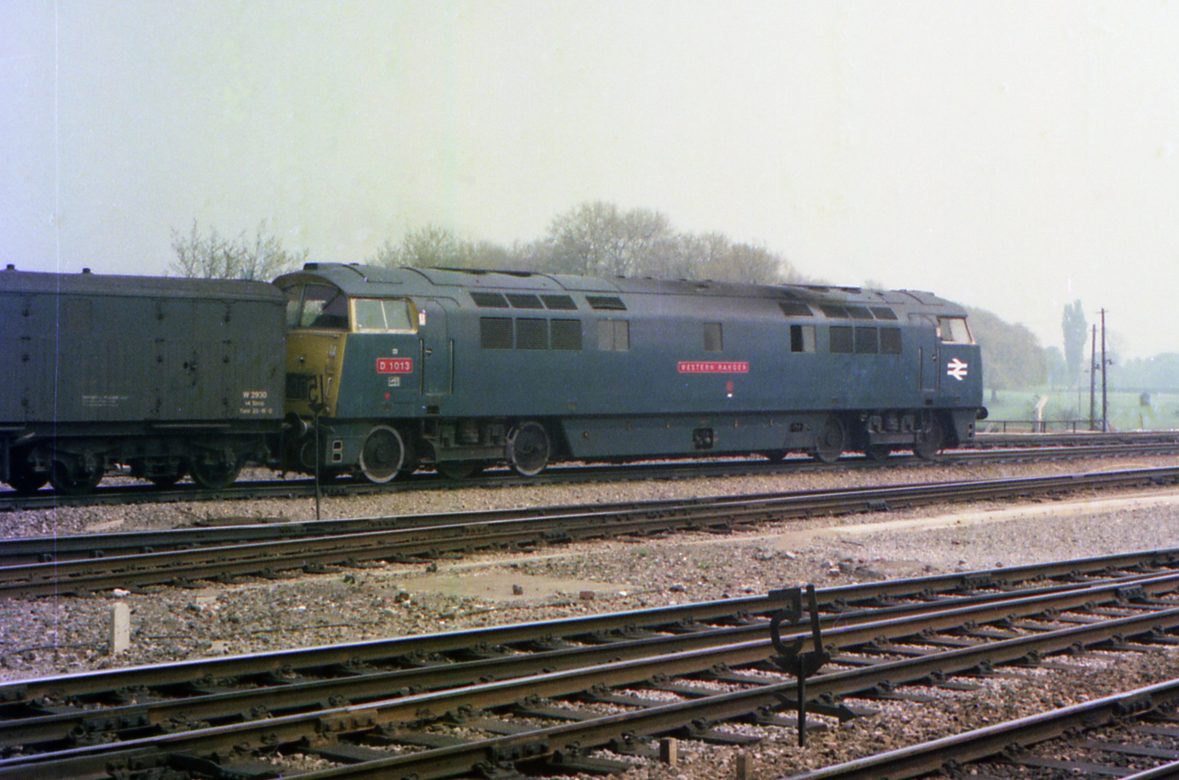 File:Class 52 D1013 Western Ranger, Reading, 8 May 1976 ...