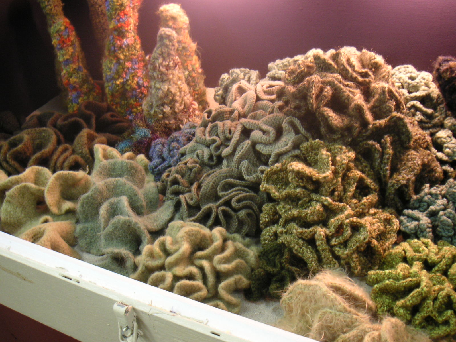 Crocheting Facts : Hyperbolic Crochet Coral Reef Coming to Washington Mathematical ...