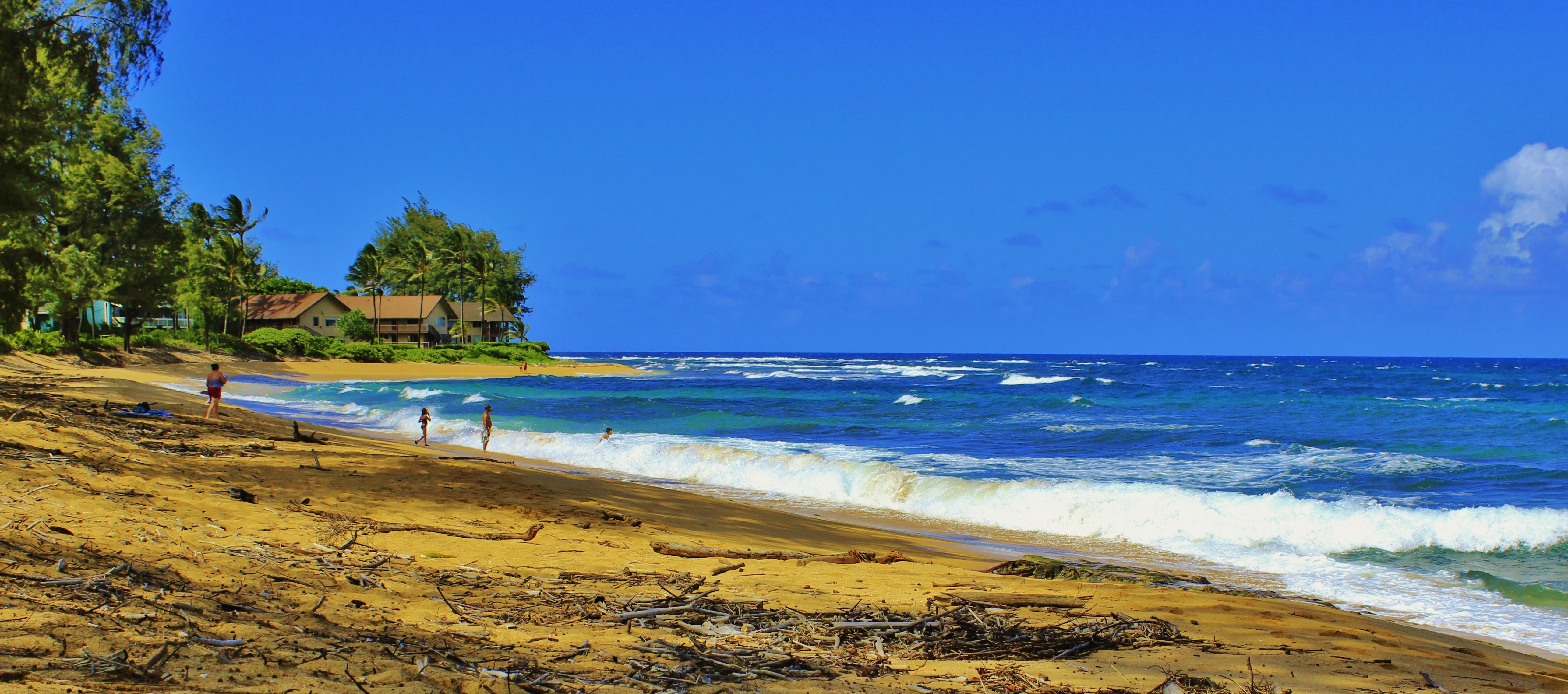 filehanalei kauai hawaii panoramio 27jpg