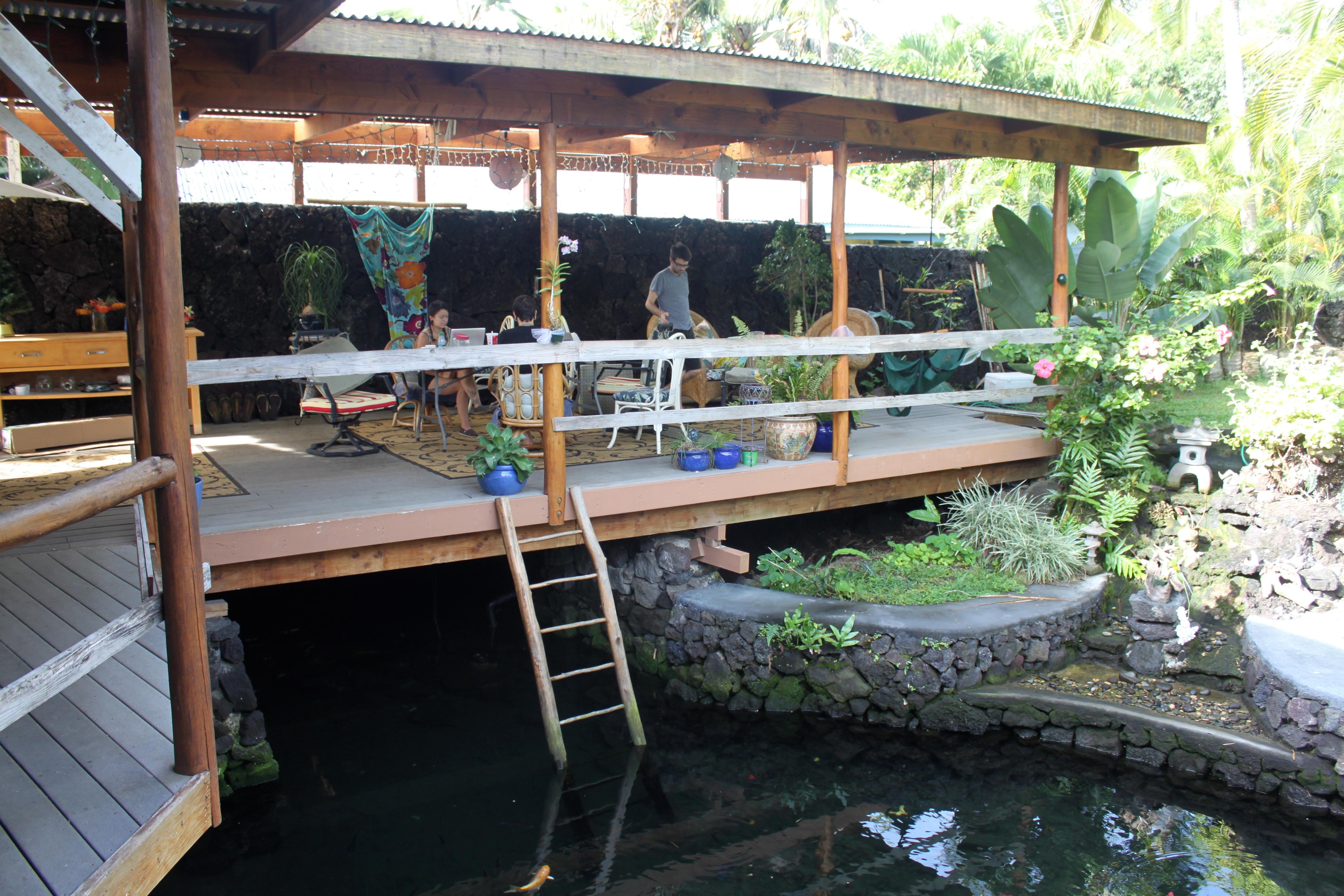 Hawaii - Big Island- Cathy & Robert's in Kapoho (6563812357).jpg Hawaii / Big Island: Cathy & Robert's in Kapoho Date 2 December 2011, 09:18