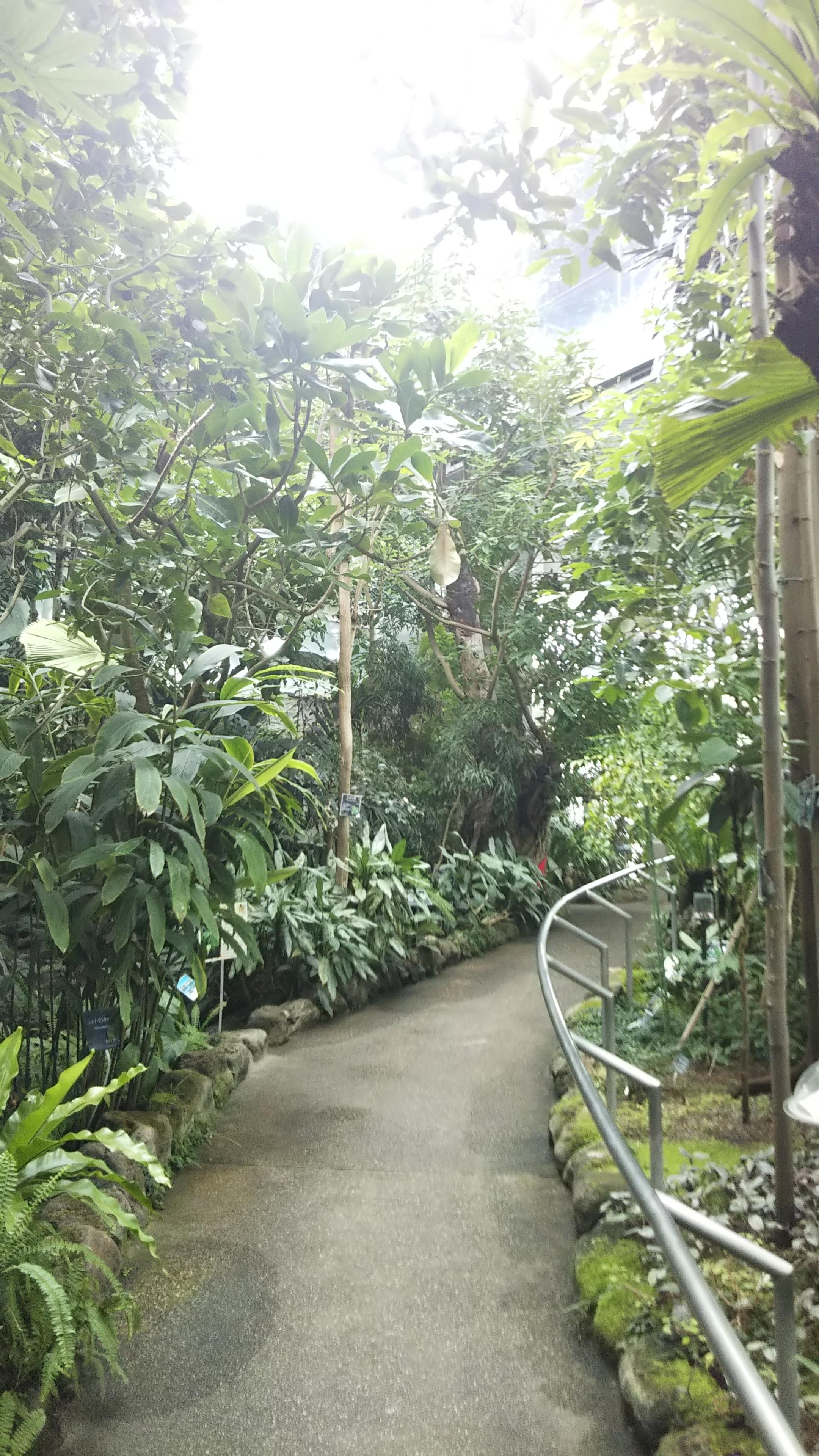 Itabashi Botanical Garden Wikipedia