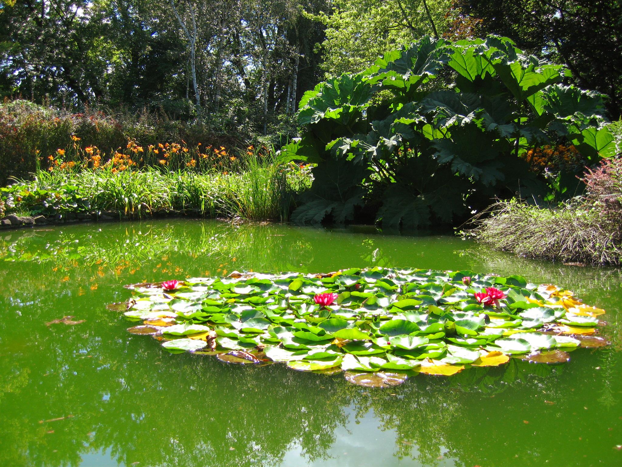 File Jardin aquatique JPG Wikimedia mons