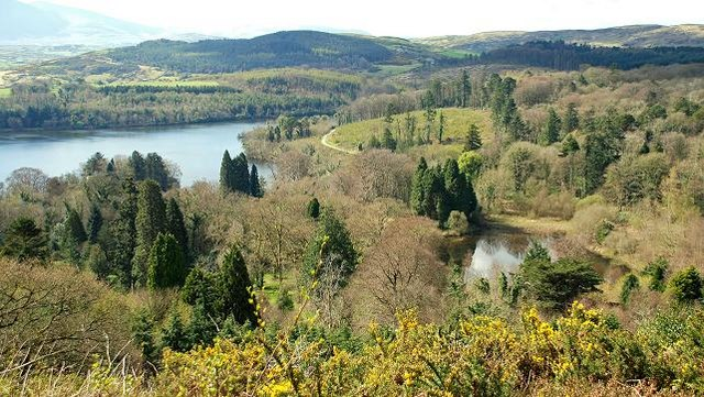 Lake and path, Castlewellan Forest Park - geograph.org.uk - 1247430