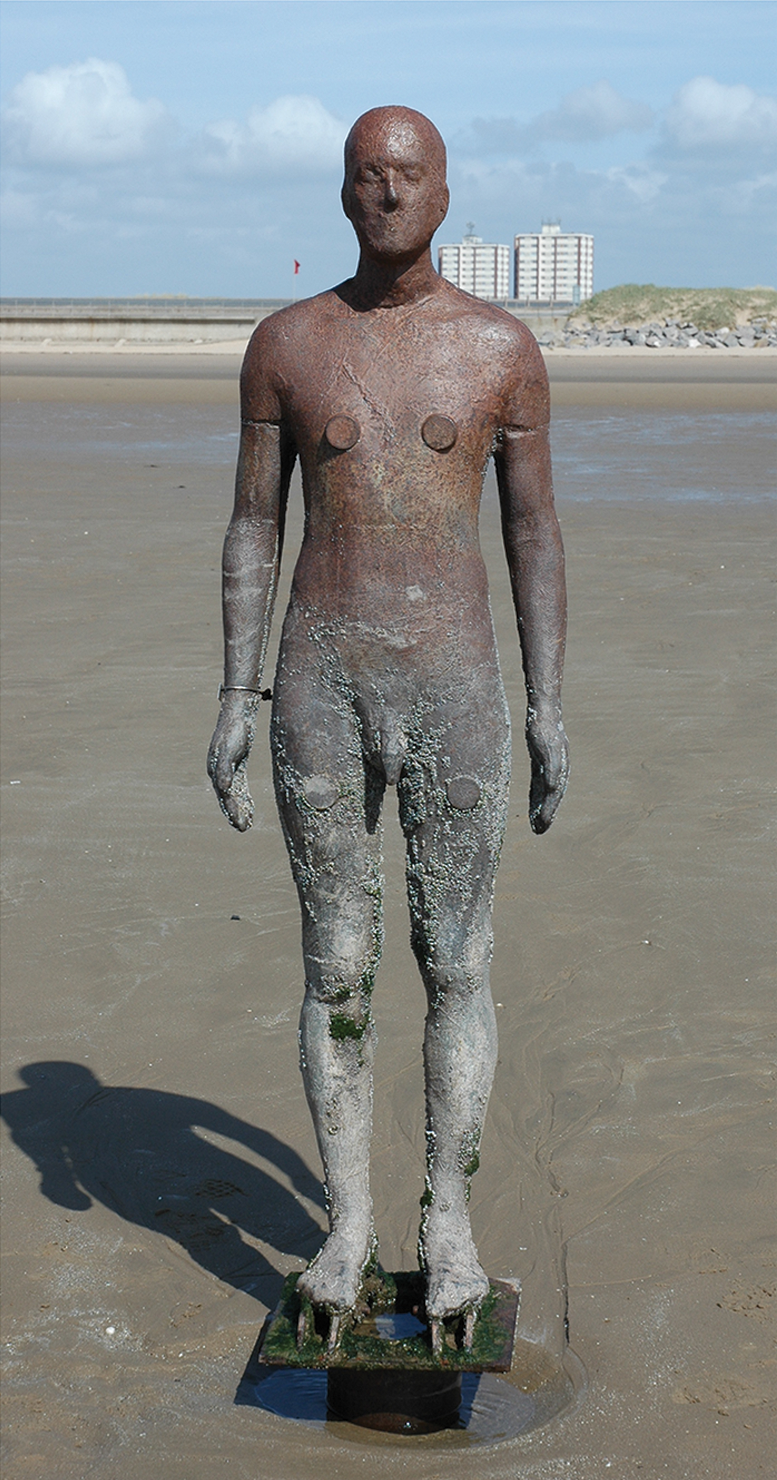 File Life Size Cast Iron Statue At Crosby Beach Journal Pone