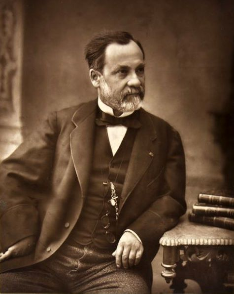 Filelouis Pasteur From Galerie Contemporaineg Wikimedia Commons
