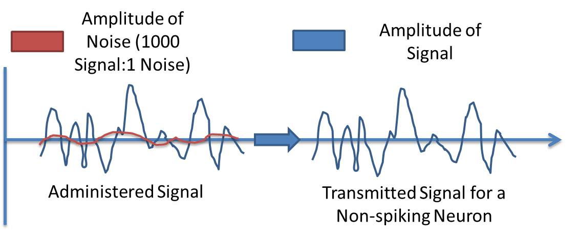 transmission of signals The most common mode of transmission of tv signals are digitalsatellite and cable new technologies allow transmission of signalsby digital.