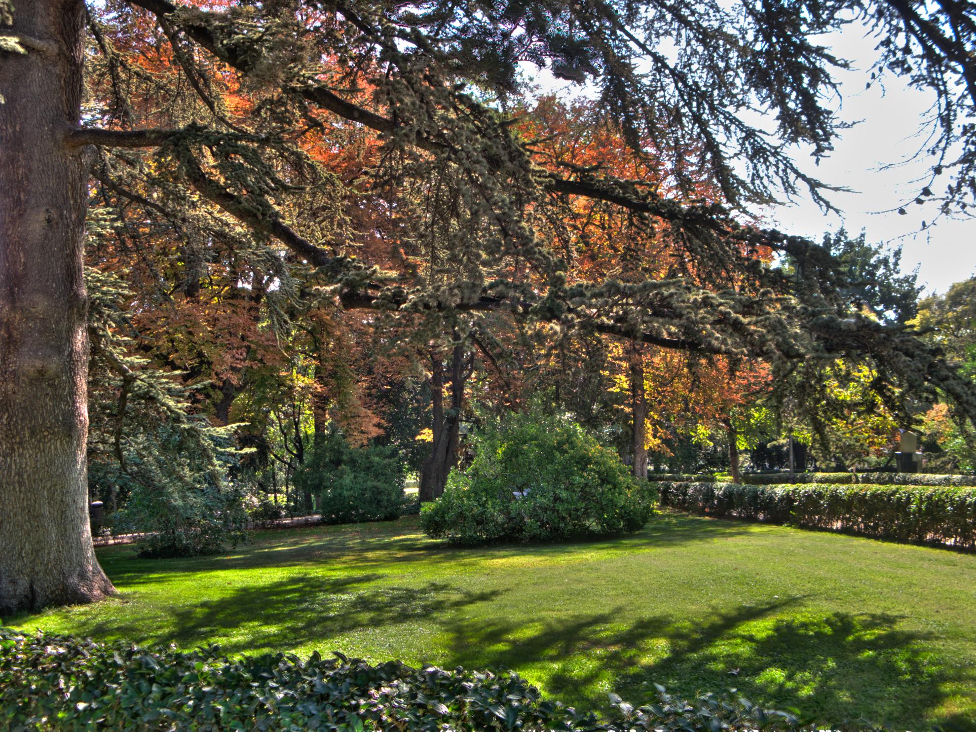 File parque fuente del berro variedad for Piscina fuente del berro