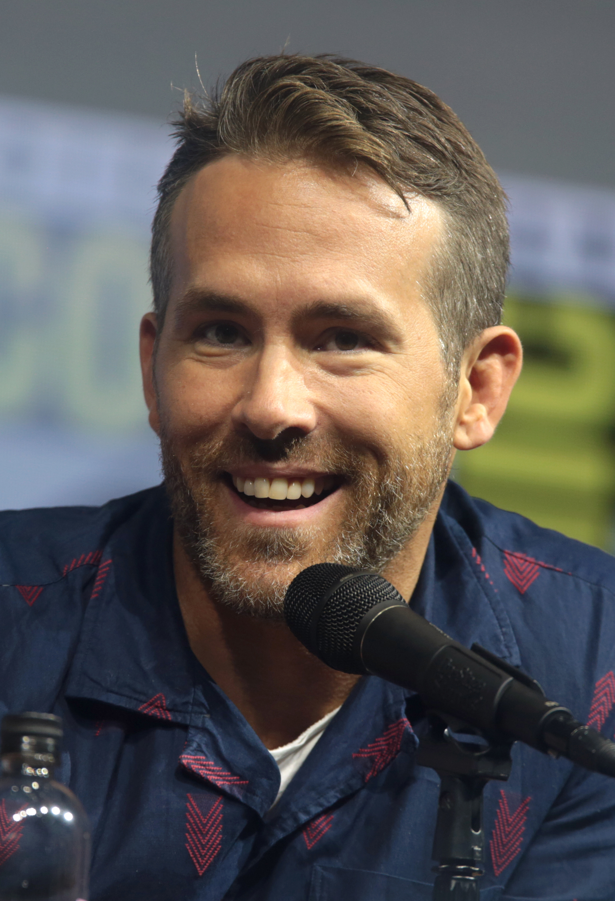 All That Way For Love 2011 ryan reynolds filmography - wikipedia