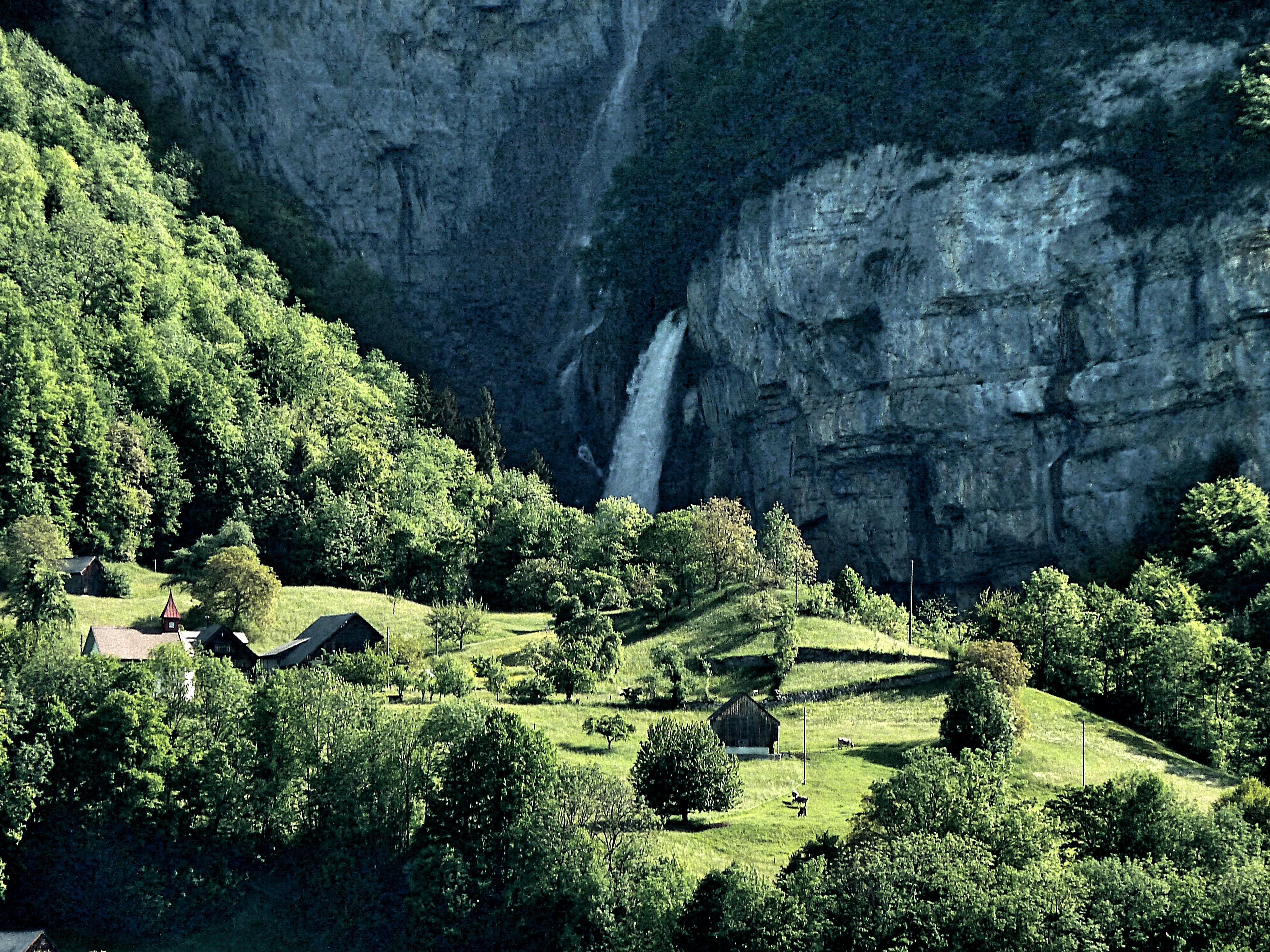 seerenbach.falls.jpg