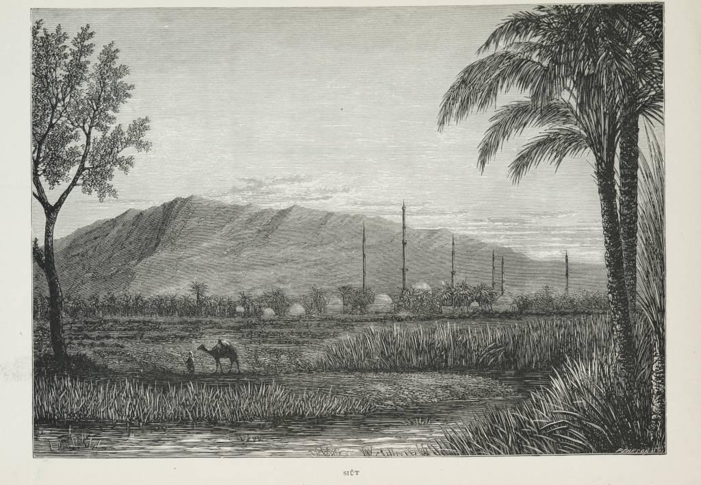 Siût        (1890) - TIMEA.jpg