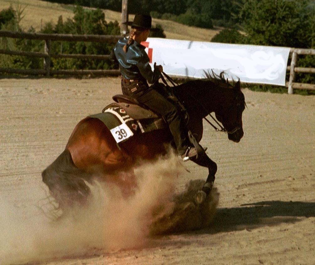 Sliding Stop Flachsberg.jpg