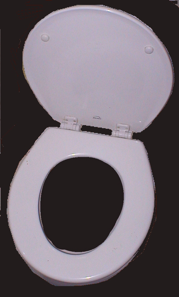 Strange Toilet Seat Wikipedia Customarchery Wood Chair Design Ideas Customarcherynet