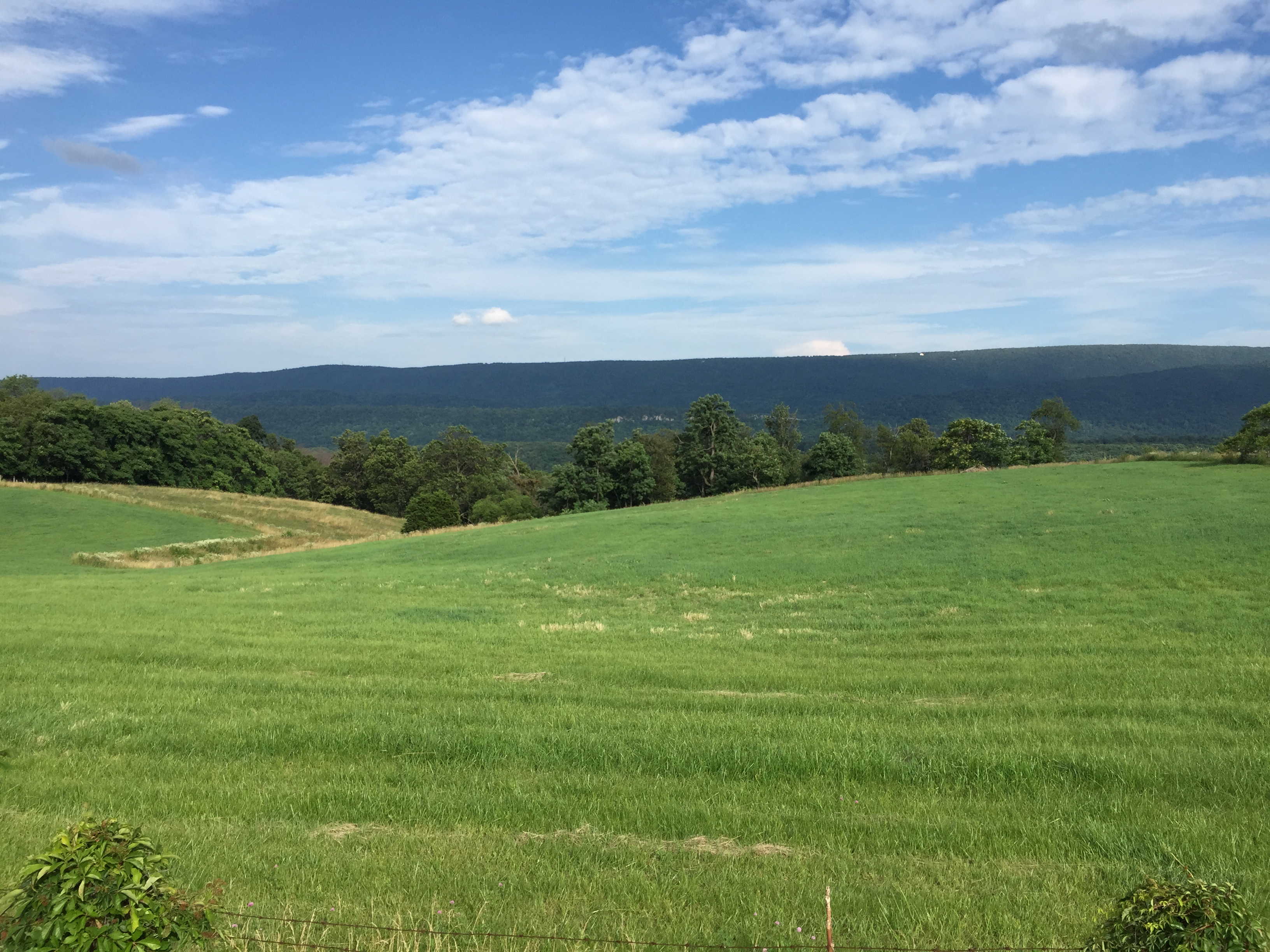 Frederick County Virginia Property Search