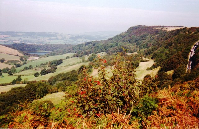 Above Sutton Bank - geograph.org.uk - 582677