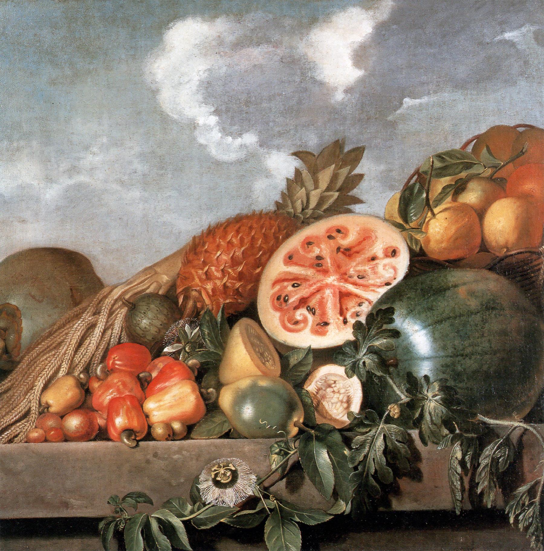File:Albert Eckhout 1610-1666 Brazilian fruits.jpg