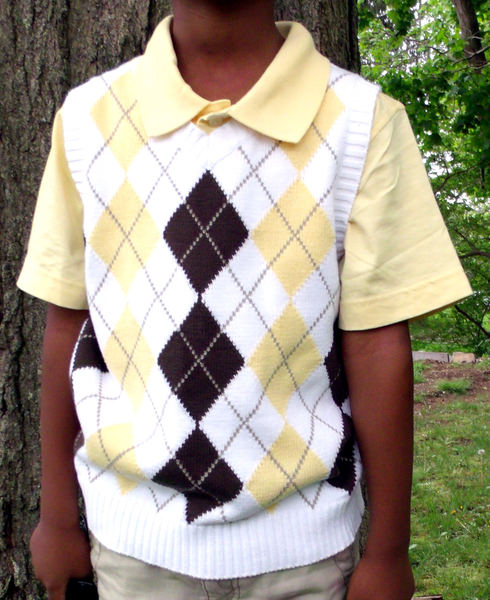 Patterned Sweater Vest Baggage Clothing