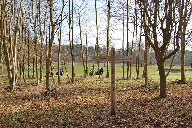Guide post, Moors Valley Country Park, Dorset - geograph.org.uk - 1175303