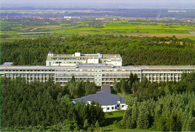Sremska Kamenica Institute Wikipedia
