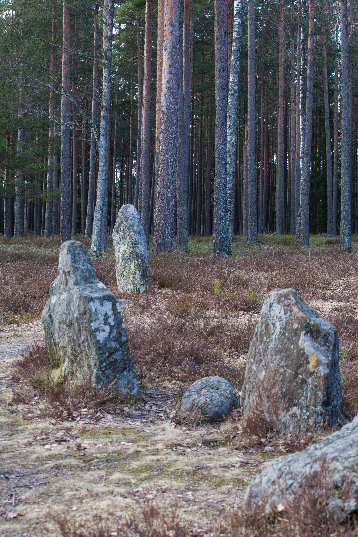 Find Girls From Jordbro, Sweden (SE) on free online dating site