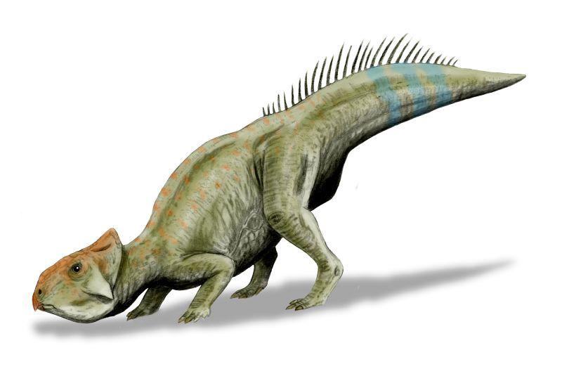 Ficheiro:Leptoceratops BW.jpg