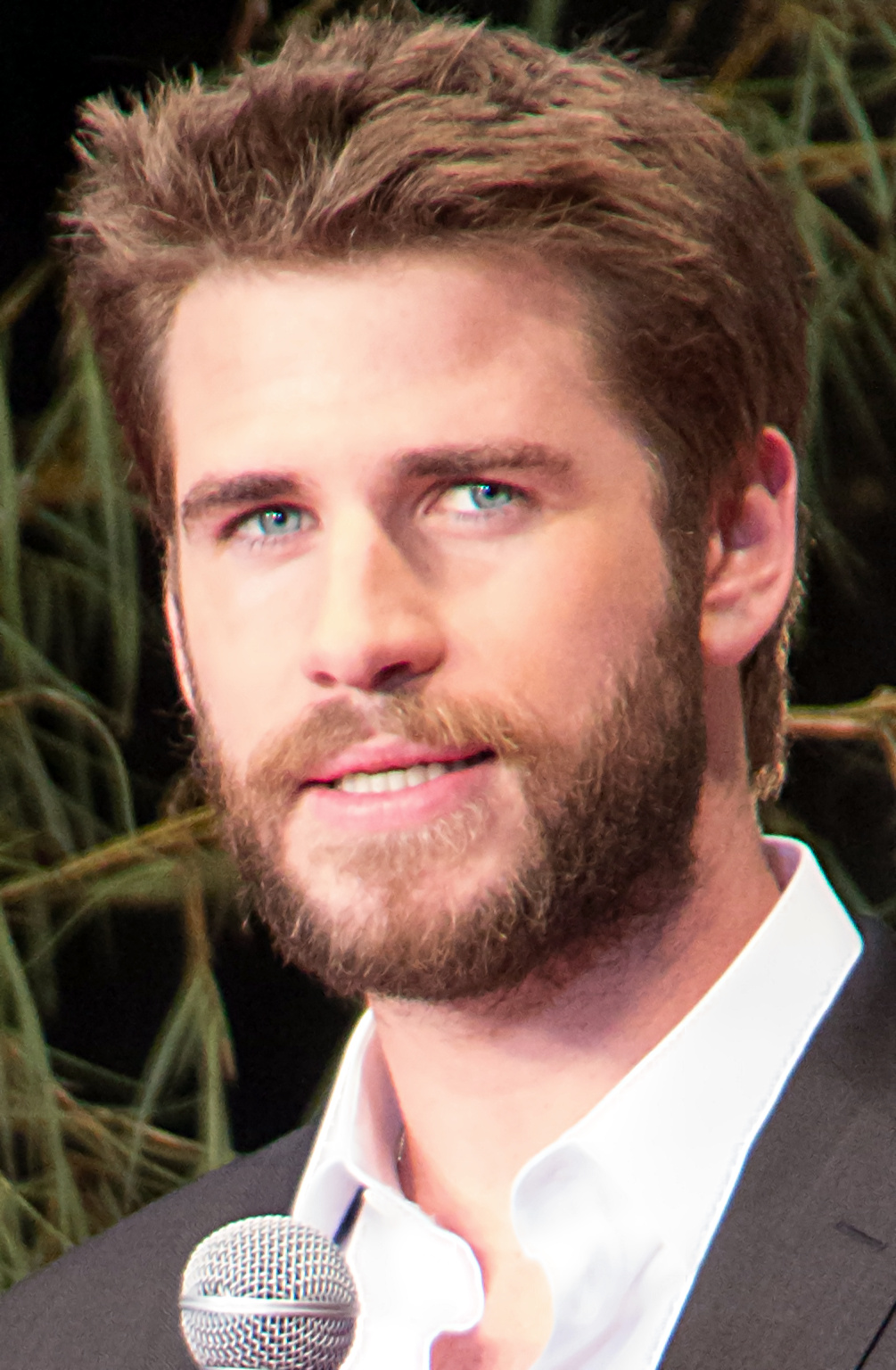 liam hemsworth wikipedia